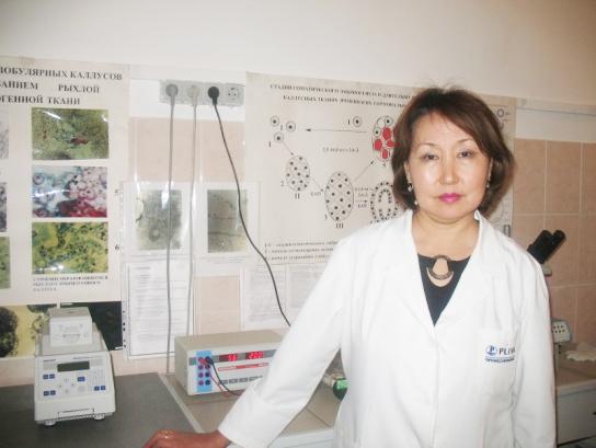 Бишимбаева Назира Козыкеевна