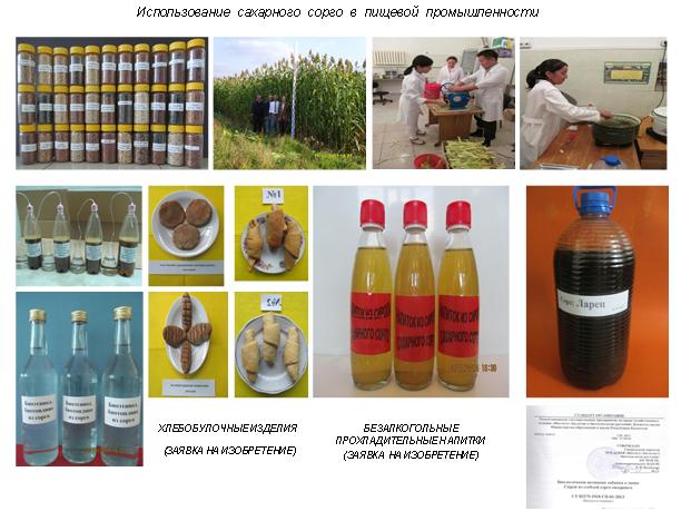 Коллекция семян сортов сахарного сорго
